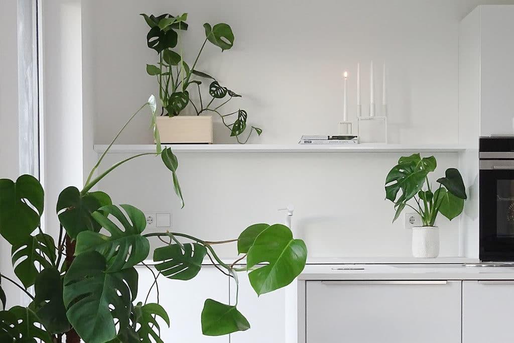 DIY Indoor Blumenkasten für Treppengeländer