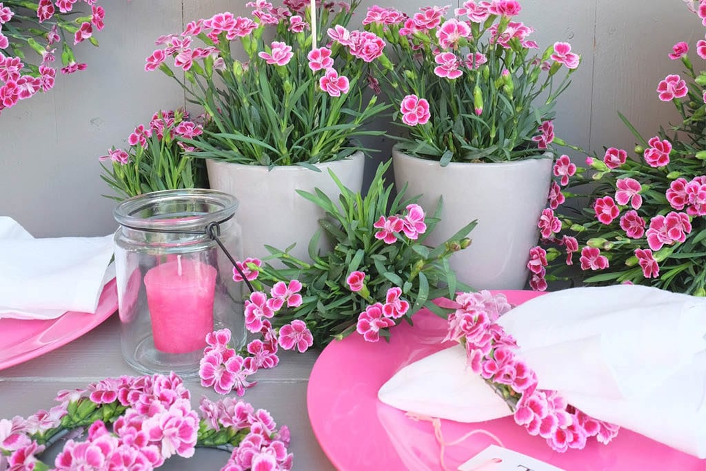 DIY Serviettenringe mit pinken Nelken