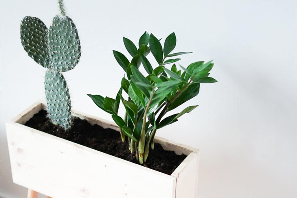 DIY Plant Box aus Holz
