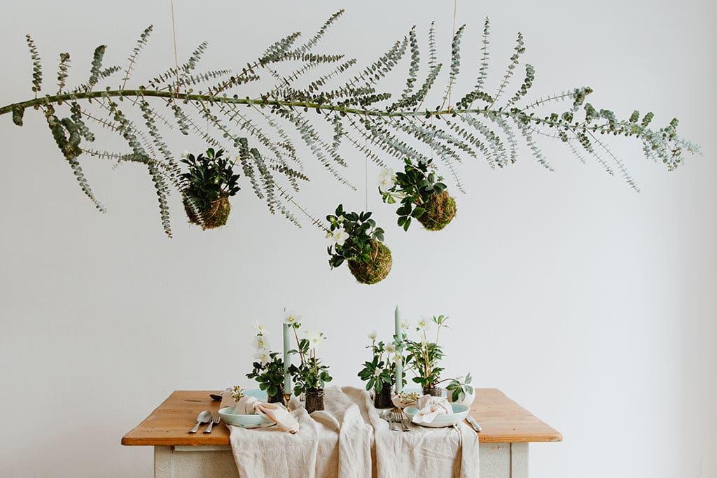 Festliche Tischdeko mit Christrosen