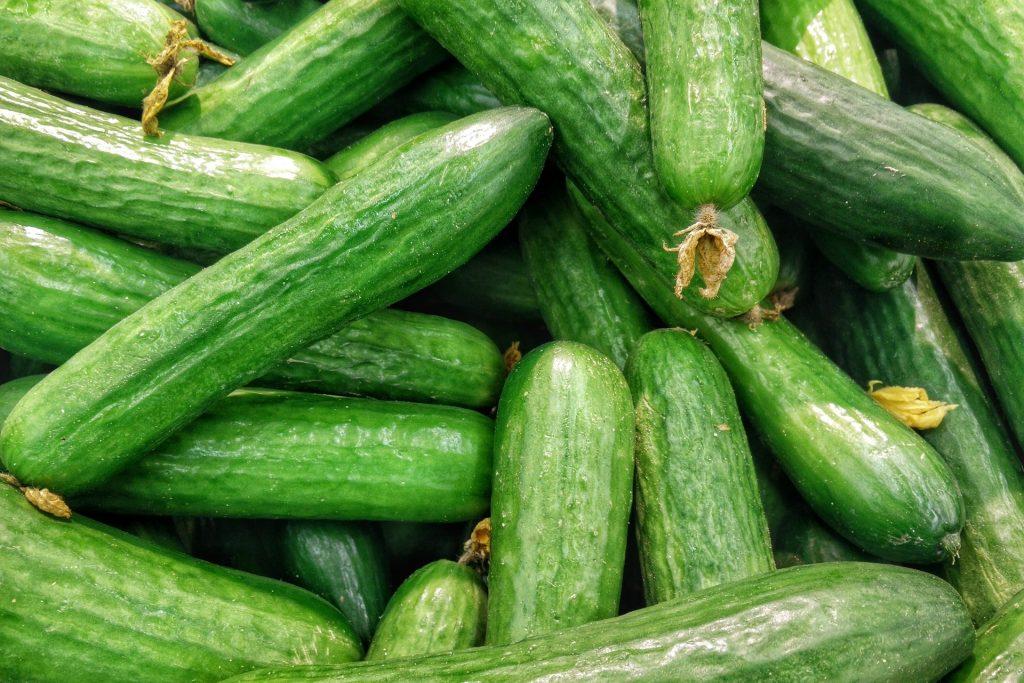 Die Salatgurke