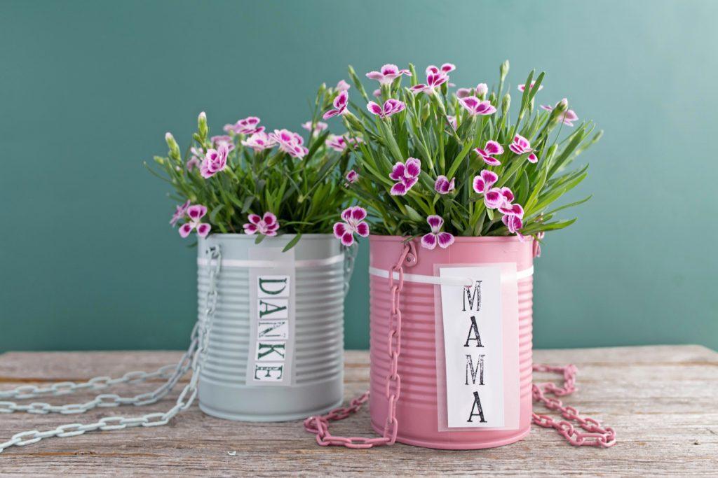 Upcycling-DIY: Bepflanzte Blumenampel aus Konservendosen