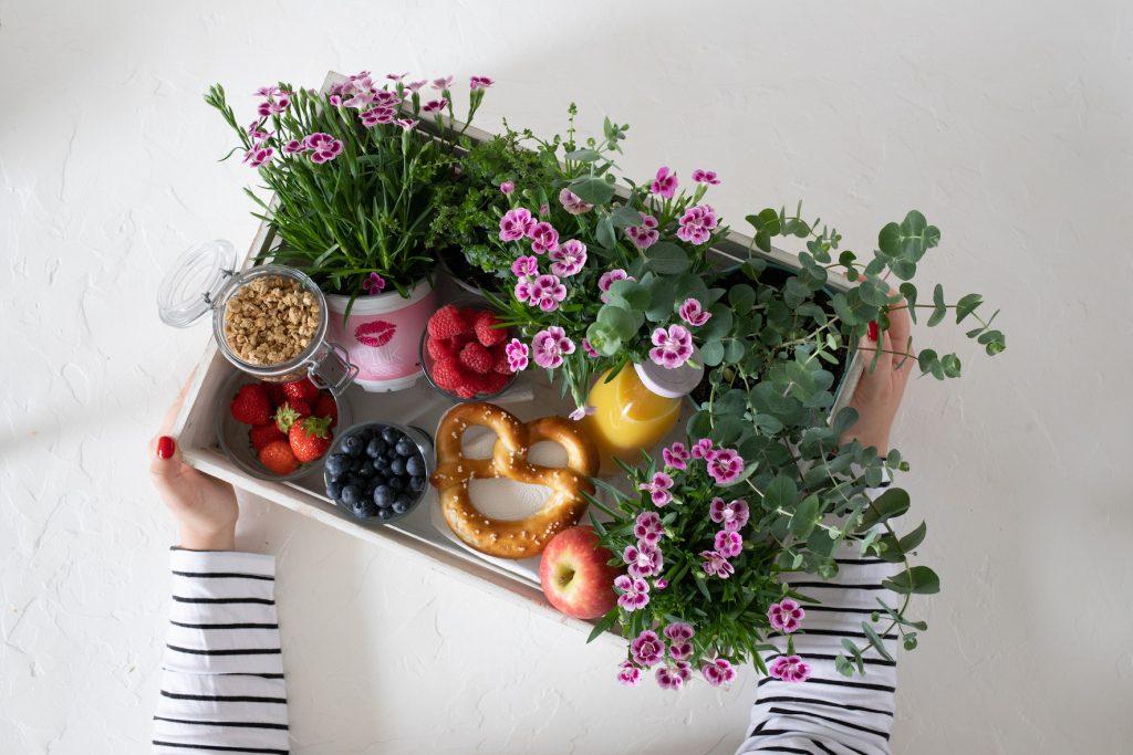 Tag der Freundschaft: DIY für eine bepflanzte Frühstückskiste