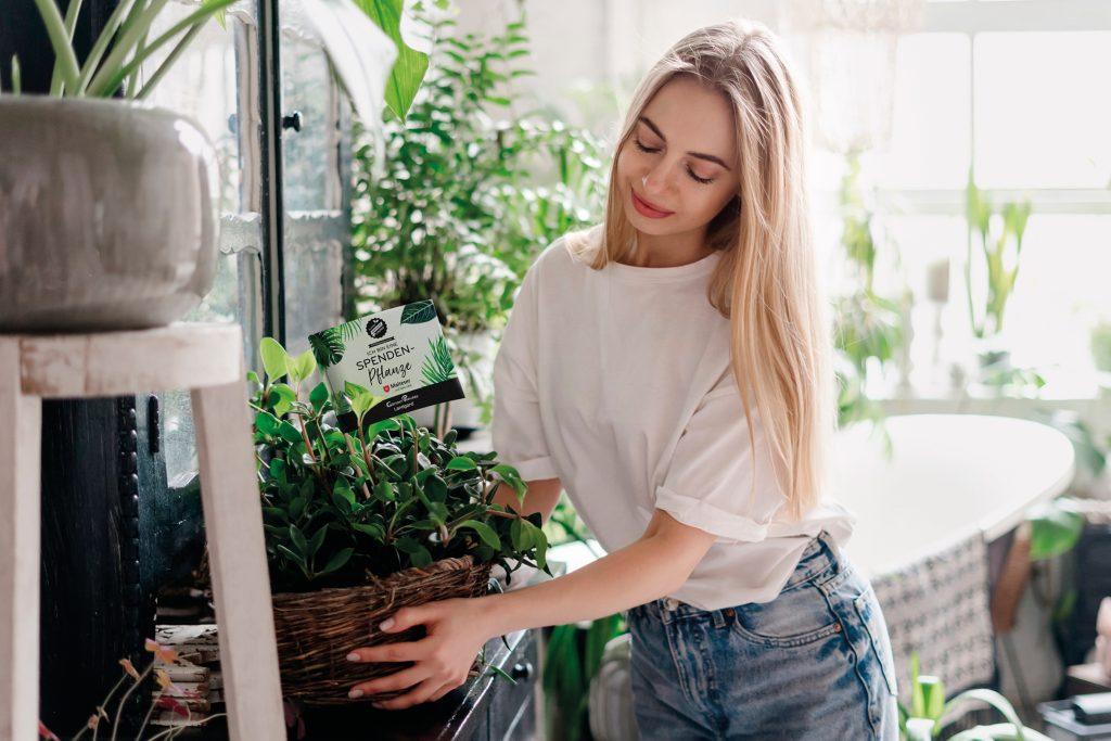 Jede Pflanze zählt!