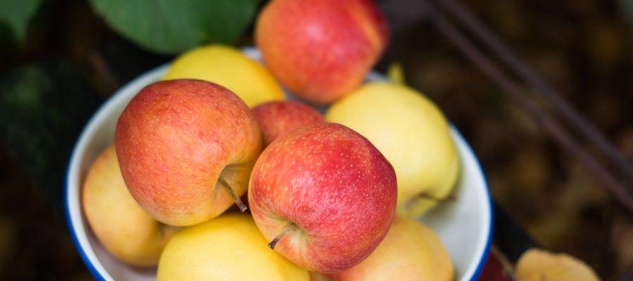 Äpfel (1 von 1)