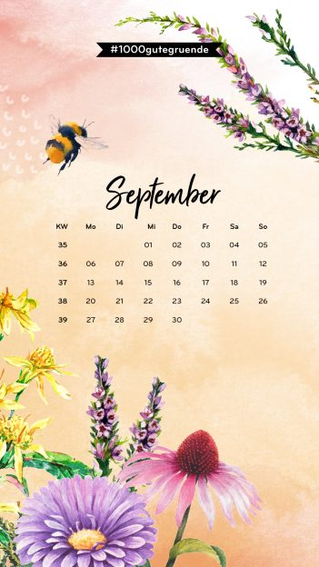 202108_TGG_Wallpaper_Iphone8-Kalender