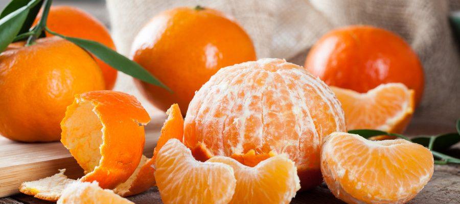 GS528815_Citrus reticulata_