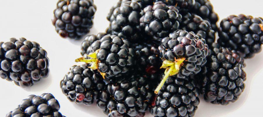 berries-blackberries-bramble-892808